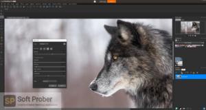 Corel PaintShop Pro 2020 + Addons Direct Link Download-Softprober.com