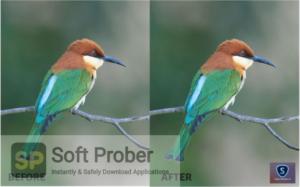 Topaz Sharpen AI 2 Direct Link Download-Softprober.com