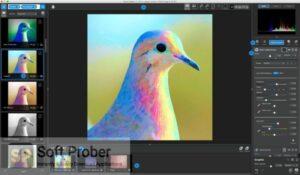 Topaz Studio Latest Version Download-Softprober.com