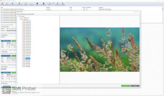 Arclab Watermark Studio 2020 Direct Link Download-Softprober.com