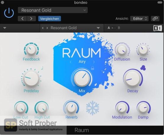 Native Instruments Raum Latest Version Download-Softprober.com