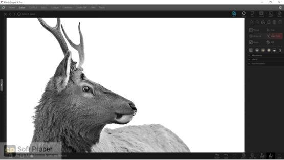 PhotoScape X Pro 2020 Direct Link Download-Softprober.com