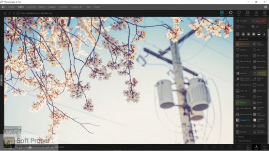 PhotoScape X Pro 2020 Offline Installer Download-Softprober.com