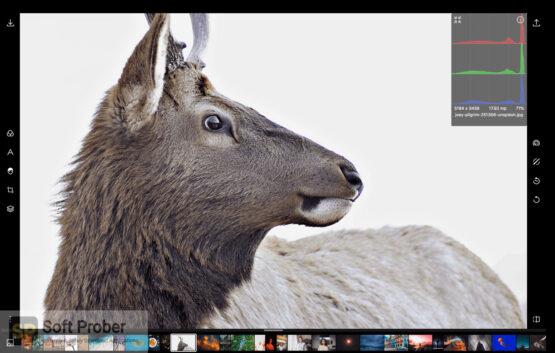 Polarr Photo Editor Pro 2020 Direct Link Download-Softprober.com