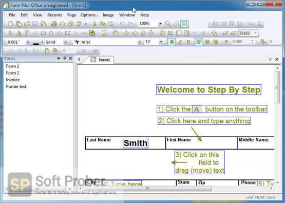 Form Pilot Office 2021 Latest Version Download-Softprober.com