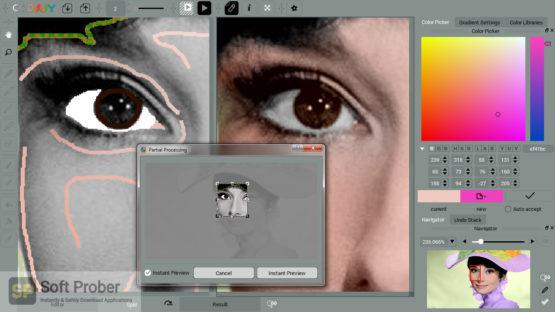 Picture Colorizer Pro v2 2021 Latest Version Download-Softprober.com