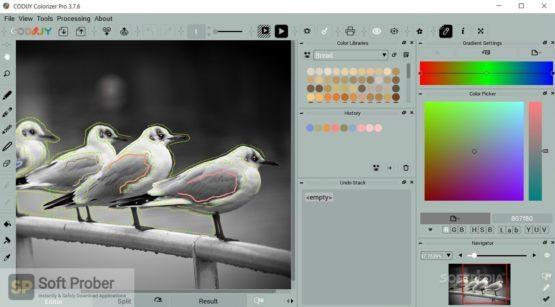 Picture Colorizer Pro v2 2021 Offline Installer Download-Softprober.com
