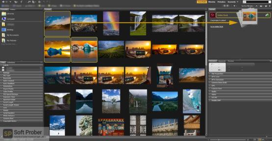 Adobe Bridge 2021 Direct Link Download-Softprober.com