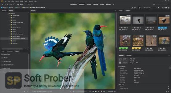 Adobe Bridge 2021 Offline Installer Download-Softprober.com