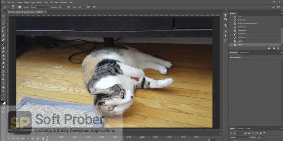 Adobe Master Collection v3 2021 Latest Version Download-Softprober.com