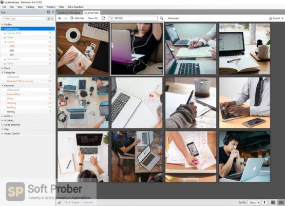 Daminion Pro 2021 Offline Installer Download-Softprober.com