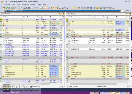 ExamDiff Pro Master Edition 2021 Latest Version Download-Softprober.com