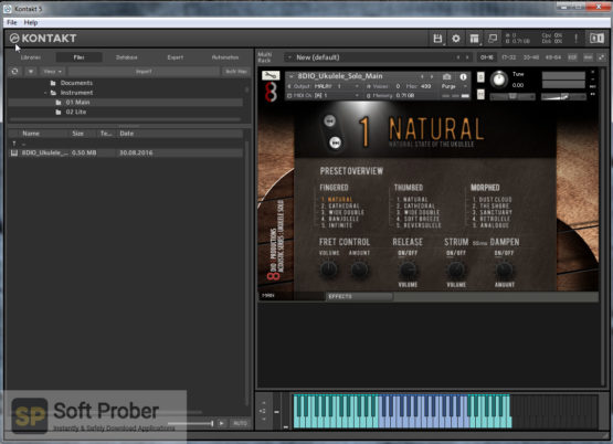 8dio Instant Ukulele Guitar Direct Link Download-Softprober.com