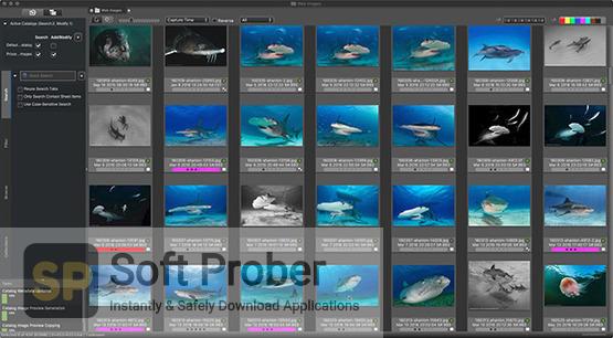 Camera Bits Photo Mechanic Plus 2021 Latest Version Download-Softprober.com