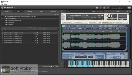 Alex Pfeffer Passionate Bansuri Direct Link Download-Softprober.com