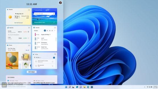 Windows 11 Pro Insider Preview 2021 Direct Link Download-Softprober.com