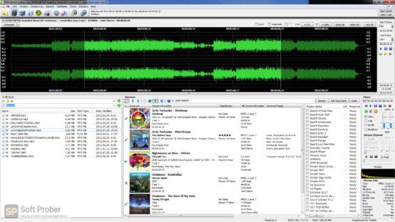 3delite MP4 Stream Editor 2021 Direct Link Download-Softprober.com