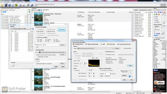 3delite MP4 Stream Editor 2021 Latest Version Download-Softprober.com