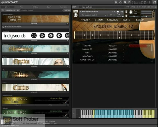 Orange Tree Samples Evolution Jumbo 12 Latest Version Download-Softprober.com