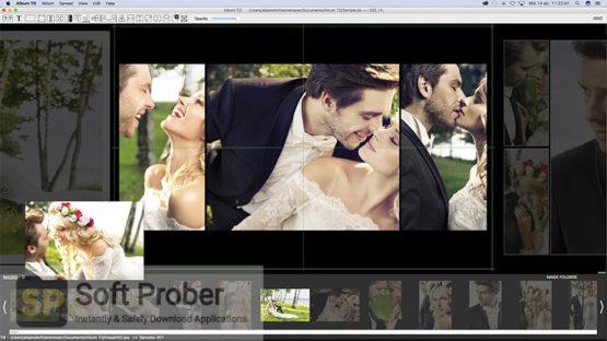 Album TD 2021 Offline Installer Download Softprober.com