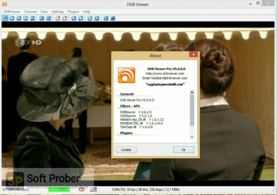 DVBViewer Pro 2021 Offline Installer Download-Softprober.com