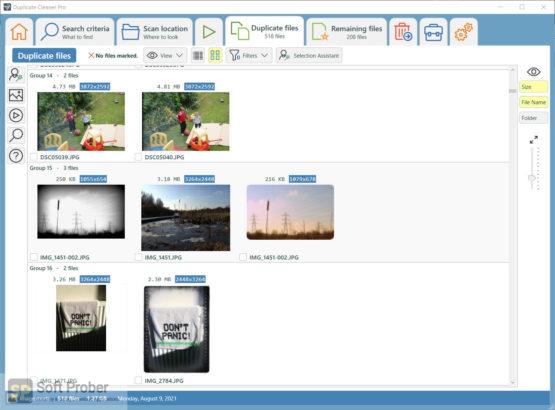 DigitalVolcano Duplicate Cleaner Pro 2021 Offline Installer Download Softprober.com