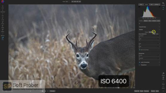 ON1 Photo RAW 2022 Direct Link Download Softprober.com