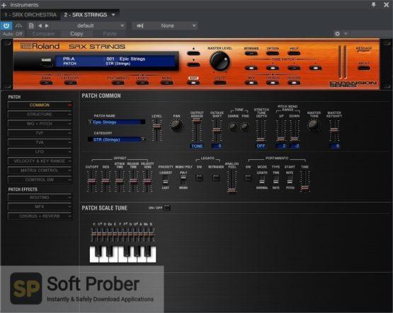Roland VS SRX STRINGS Direct Link Download Softprober.com